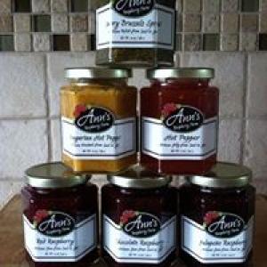 Ann's Raspberry Farm