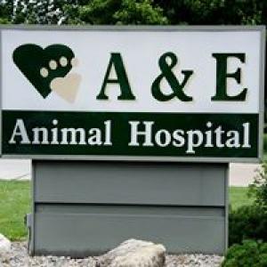 A and E Animal Hospital