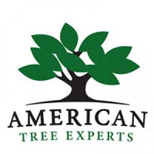 American Tree Experts Inc.