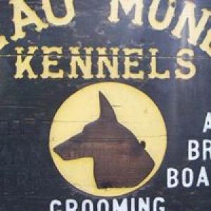 Beau Monde Kennels