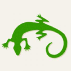 Gecko Landscaping Inc