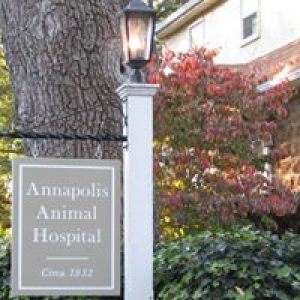 Annapolis Animal Hospital