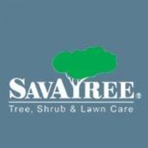Autumn Savatree