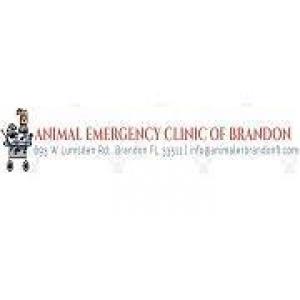 Animal Emergency Clinic of Brandon