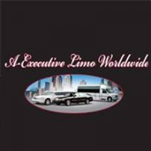 A Executive Limousine