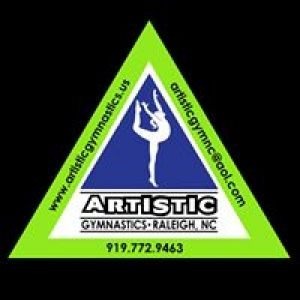 Artistic Gymnastics School