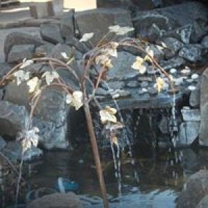 American Water Works LLC