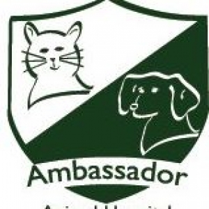Ambassador Animal Hospital PA