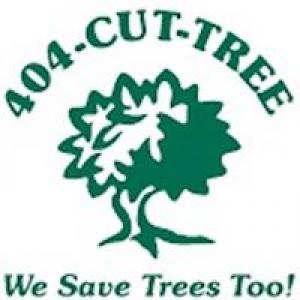 404 Cut Tree