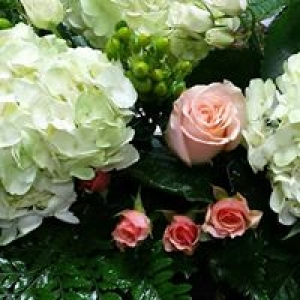 Bellaire Flower Shop