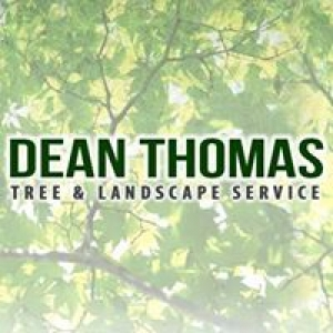 Dean Thomas Tree Service