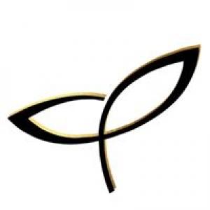 Aerial Company Inc