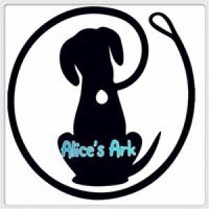 Alice's Ark