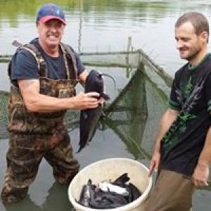Beemer Fisheries