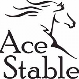 Ace Stables