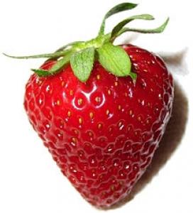 Crum's Strawberry Farm