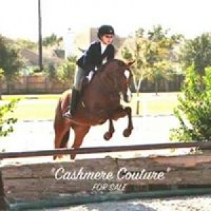 Bayview Equestrian Center