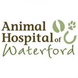 Animal Hospital of Waterford