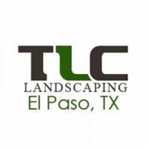Tree Lawn Care