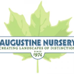 Augustine Nursery
