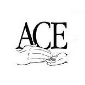 Ace Speech and Language Clinic LLC