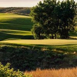 Bayside Golf