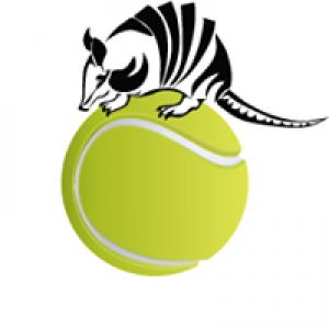 All Star Tennis Court Co