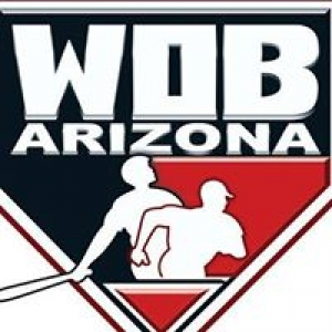 Arizona World of Baseball