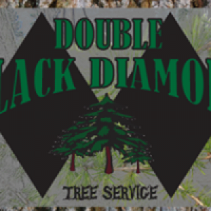 Double Black Diamond Tree Service