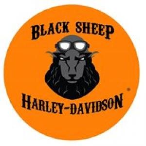 Benjy's Harley Davison