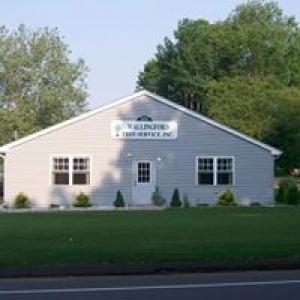 Wallingford Tree Service Inc