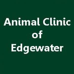 Animal Clinic of Edgewater