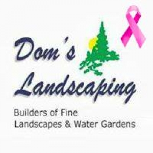 Dom's Landscaping