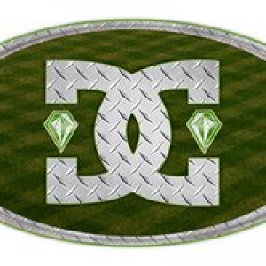 Diamond Cut Lawn & Landscape L.L.C.