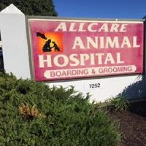 Allcare Animal Hospital
