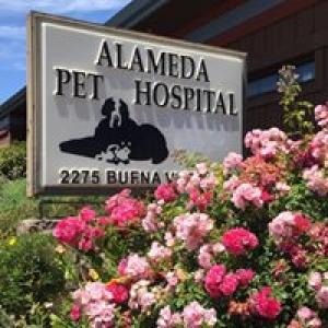 Alameda Pet Hospital