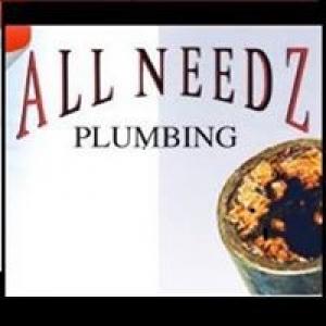 All Needz Plumbing