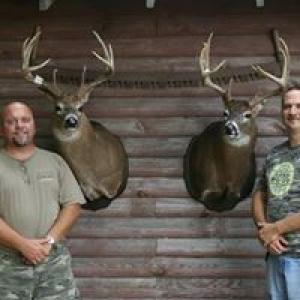 Beebe's Taxidermy