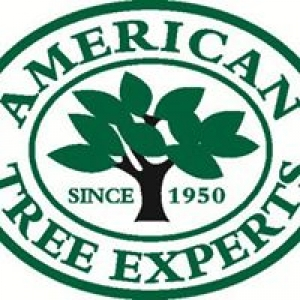 American Tree Experts, Inc.