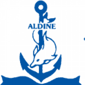 Aldine Travel Inc