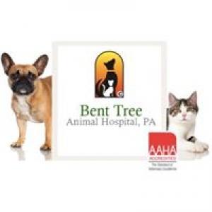 Bent Tree Animal Hospital PA