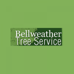 Bellweather Tree Service