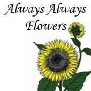 Always Always Flowers