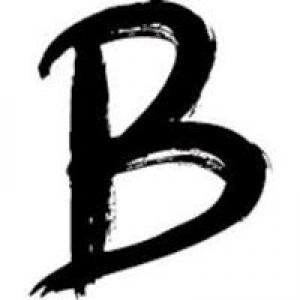 Barrett Enterprises Inc