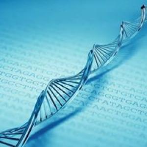 Functional Bioscience