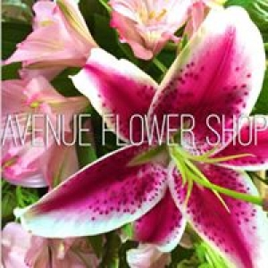 Avenue Flower Shop & Greenhouse