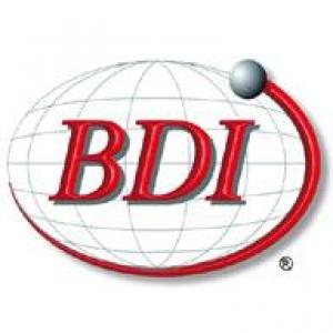 Bearing Distributors Inc