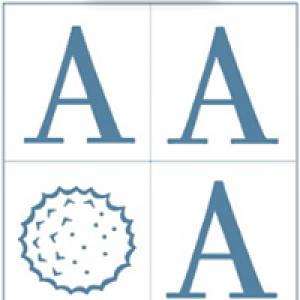 American Academy Of Otolaryngic Allergy