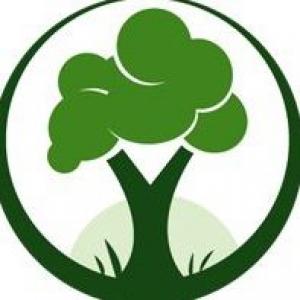 Dallas Tree Pros