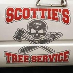 Scotty S Tree Service
